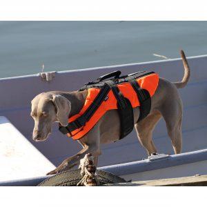 Hundeschwimmwesten