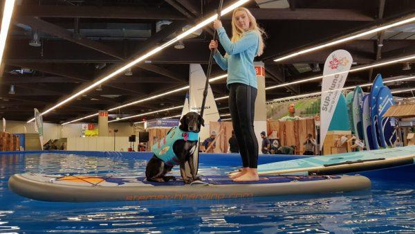 Stemax Wild Dog Freizeitmesse 2019